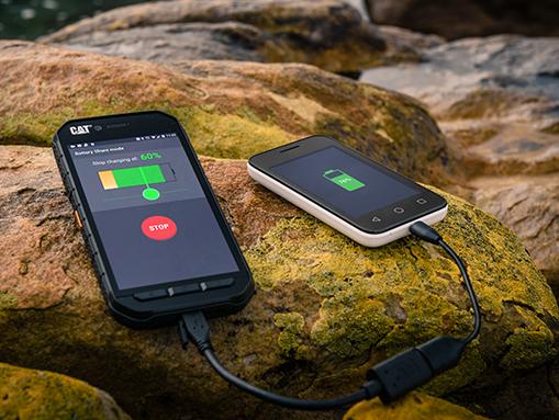 Защищённые смартфоны Cat S31 и S41 оцениваются в 320 и 450